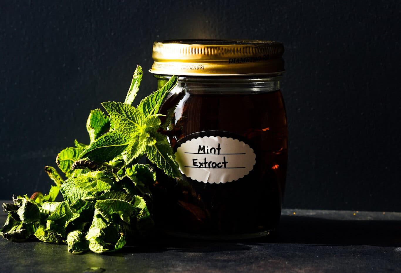 Homemade Mint Extract Recipe